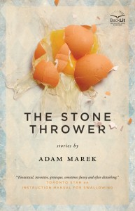 The Stone Thrower by Adam Marek (North American edition) cover design